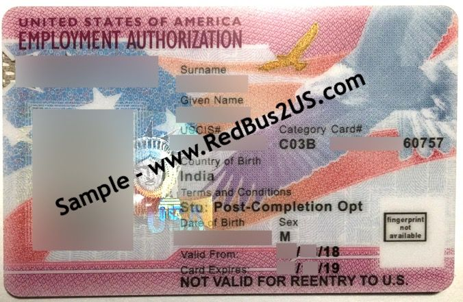 F1 Visa OPT Card Sample Front Side - USA