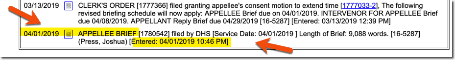 Court Brief Submitted by DHS in April 2019
