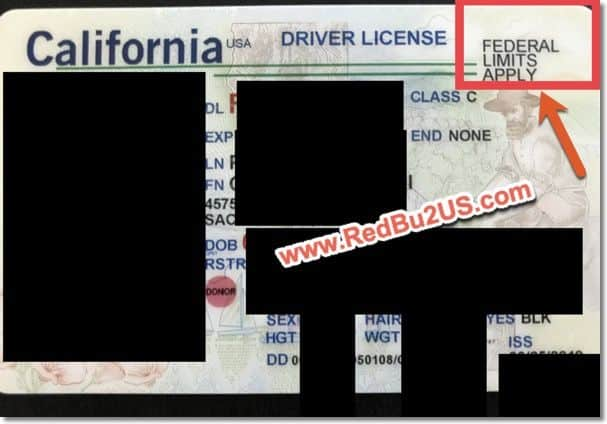 AB 60 License H4 Visa California Sample