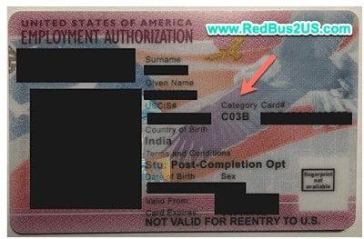 USCIS EAD Card Category Code