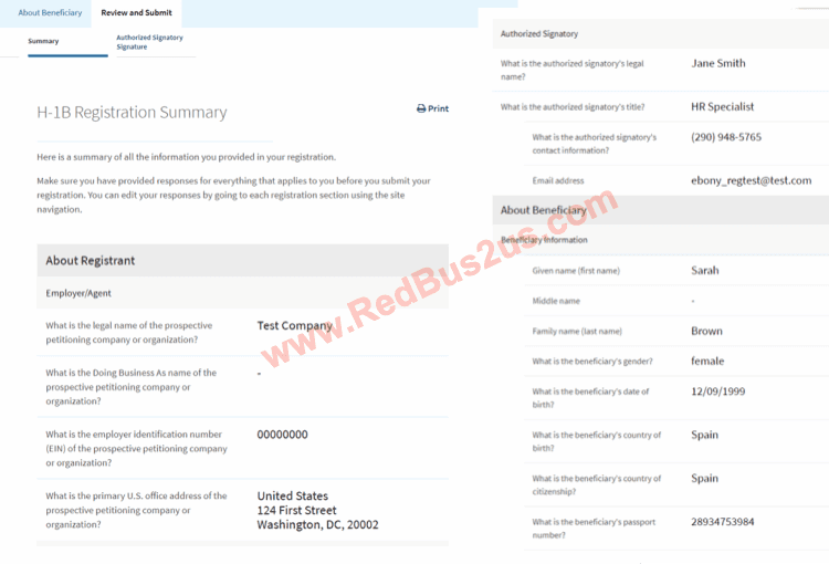 H1B Registration Summary before Submission