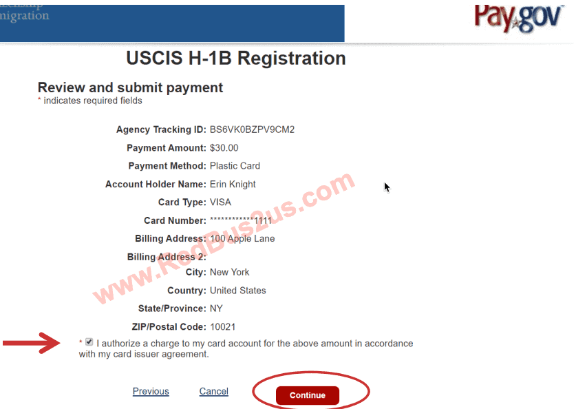 Payment Screen for H1B Registration on Pay.gov Confirmation