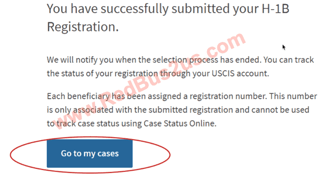 Successful Submission of H1B Registration