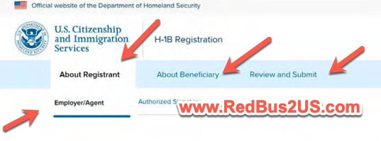 Various Sections in H1B Registration System - Tool