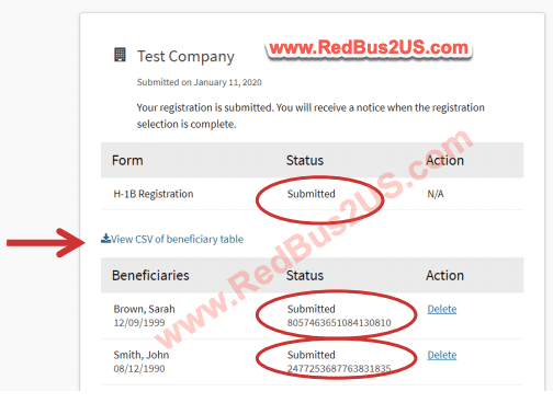 H1B Registrations Submissions Screen