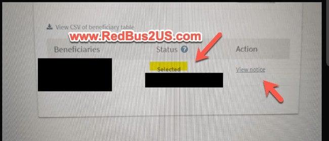 H1B Registration Result - Selected Status
