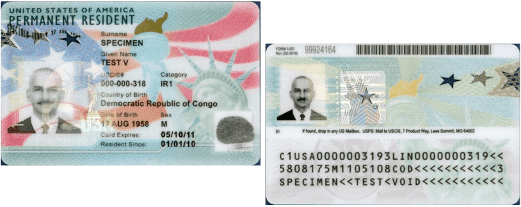 US Green Card Sample - Front and Back