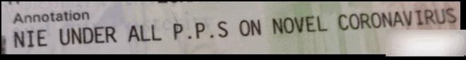 NIE - US Visa Annotation